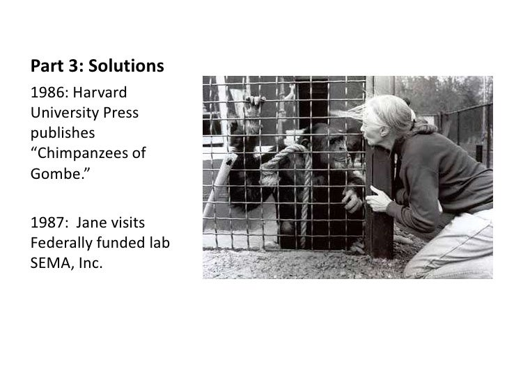 "Part 3: Solutions1986: HarvardUniversity Presspublishes""Chimpanzees ofGombe.""1987: Jane visitsFederally funded labSEMA, Inc."