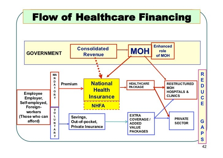 Flow of Healthcare Financing                              Consolidated   GOVERNMENT                   Revenue             ...