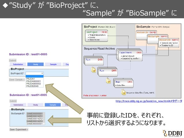 DDBJ Sequence Read Archive (DRA) 新登録システム開始 Slide 2