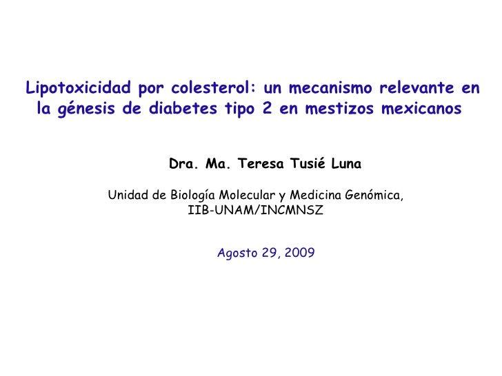 Lipotoxicidad por colesterol: un mecanismo relevante en la génesis de diabetes tipo 2 en mestizos mexicanos  Dra. Ma. Tere...