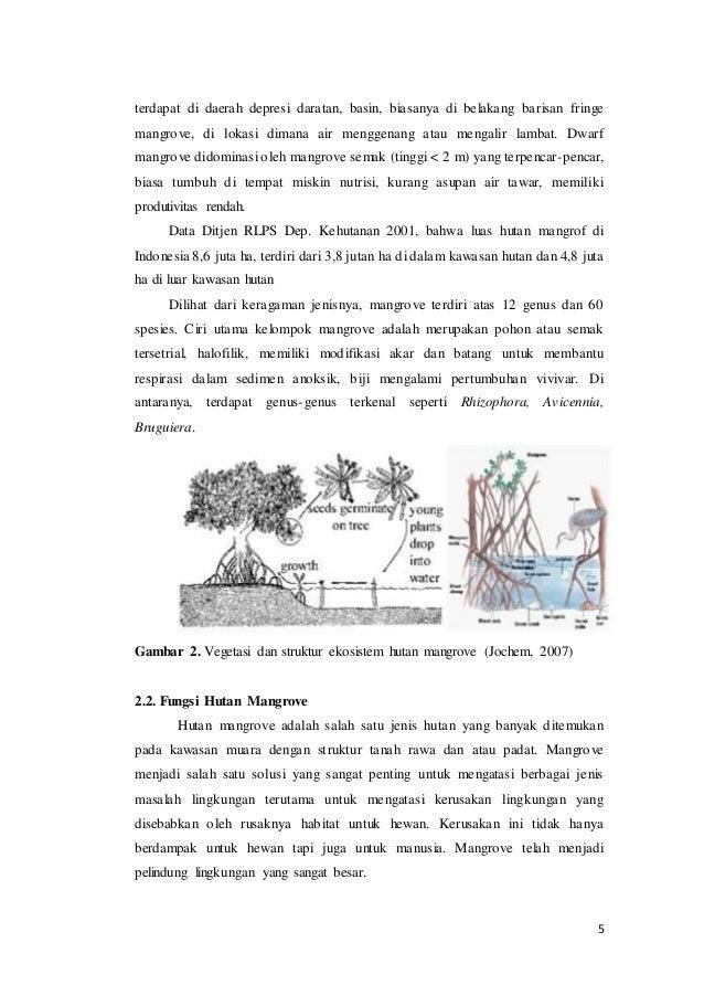Dr achmad syamsu makalah fungsi mangrove, permasalahan dan ...