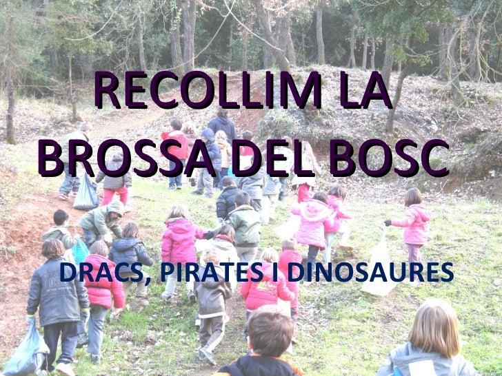 DRACS, PIRATES I DINOSAURES RECOLLIM LA BROSSA DEL BOSC