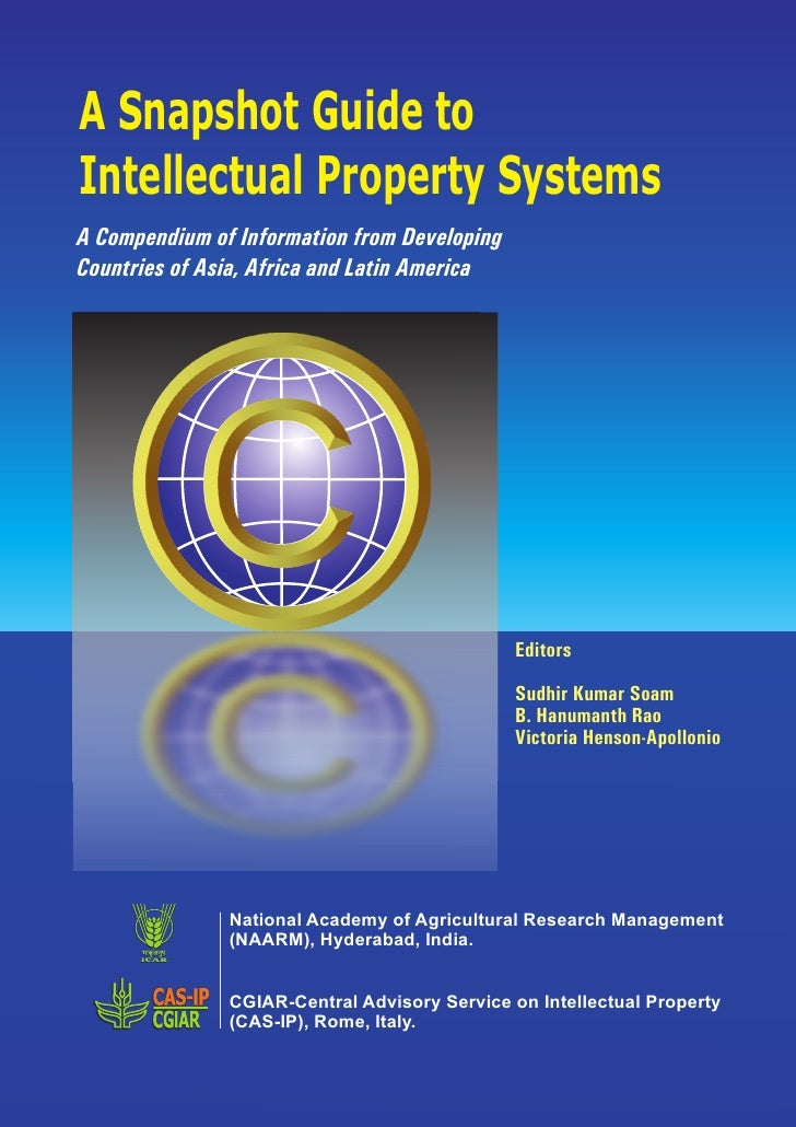 Draft A Snapshot Guide To Intellectual Property Systems
