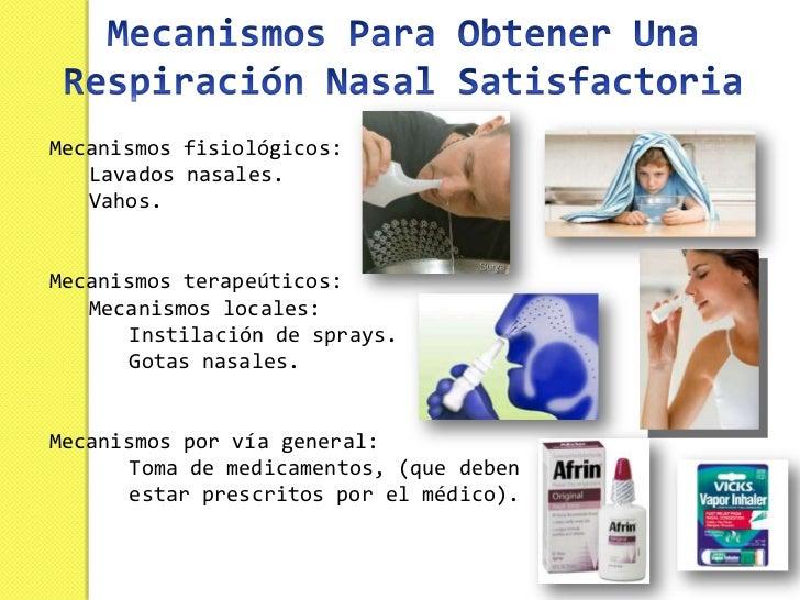 NARIZ - Anatomia y Funciones