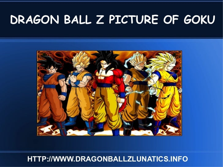 DRAGON BALL Z PICTURE OF GOKU HTTP://WWW.DRAGONBALLZLUNATICS.INFO