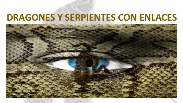 DRAGONES Y SERPIENTES CON ENLACES