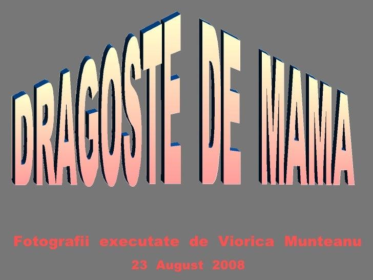 DRAGOSTE  DE  MAMA Fotografii  executate  de  Viorica  Munteanu 23  August  2008