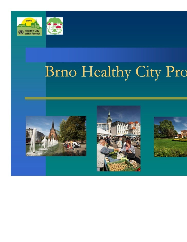 Brno Healthy City Profile                            1