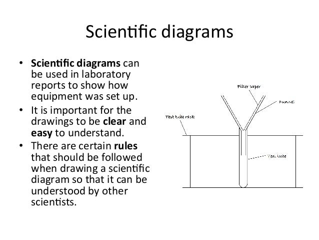 Drawing scientific diagram