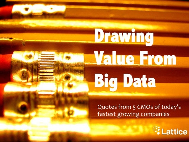 Drawing Value From Big DataQuotes from 5 CMOs of today's fastest growing companies