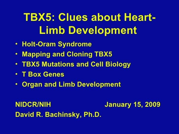 TBX5: Clues about Heart-Limb Development  <ul><li>Holt-Oram Syndrome </li></ul><ul><li>Mapping and Cloning TBX5 </li></ul>...