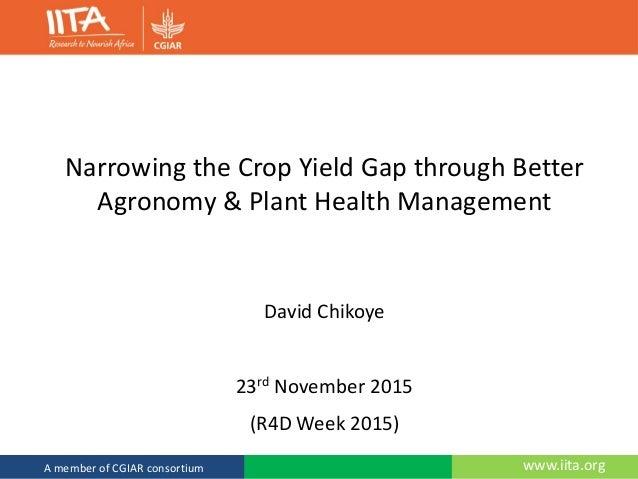 www.iita.orgA member of the CGIAR consortium www.iita.orgA member of CGIAR consortium Narrowing the Crop Yield Gap through...