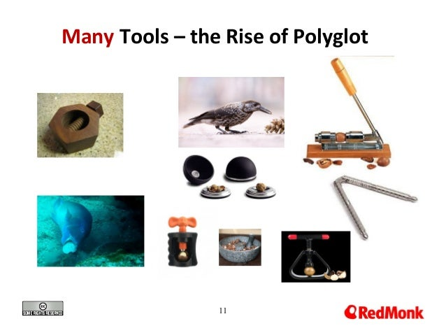 11 Many Tools – the Rise of Polyglot