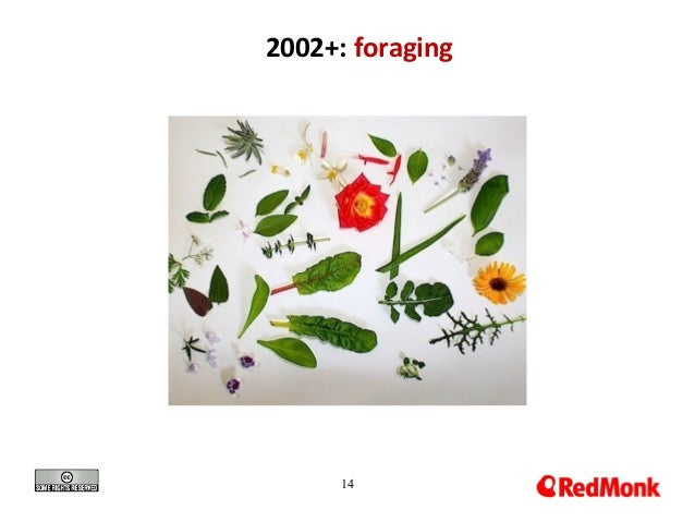 14 2002+: foraging