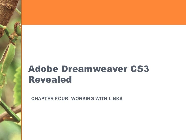Adobe Dreamweaver CS3 Revealed CHAPTER FOUR: WORKING WITH LINKS