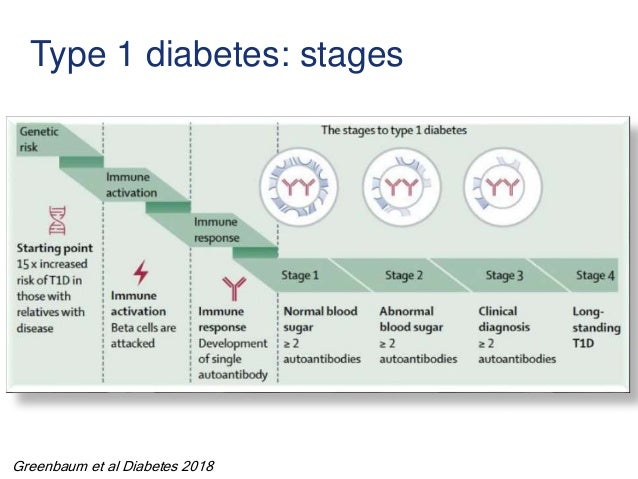 Type 1 diabetes: stages Greenbaum et al Diabetes 2018