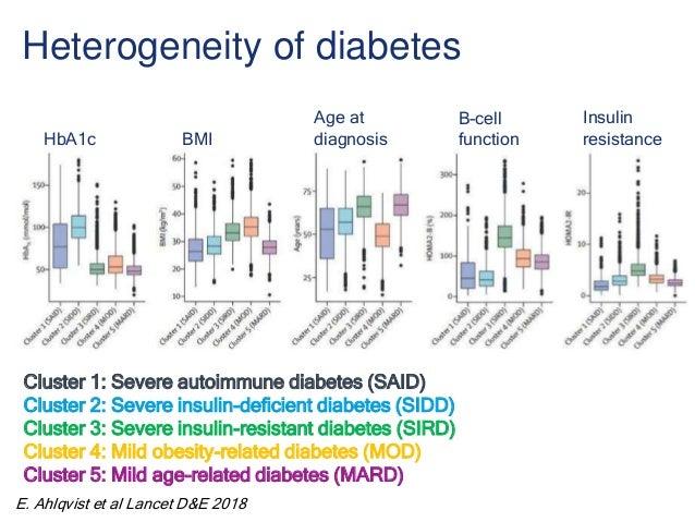 Heterogeneity of diabetes Cluster 1: Severe autoimmune diabetes (SAID) Cluster 2: Severe insulin-deficient diabetes (SIDD)...