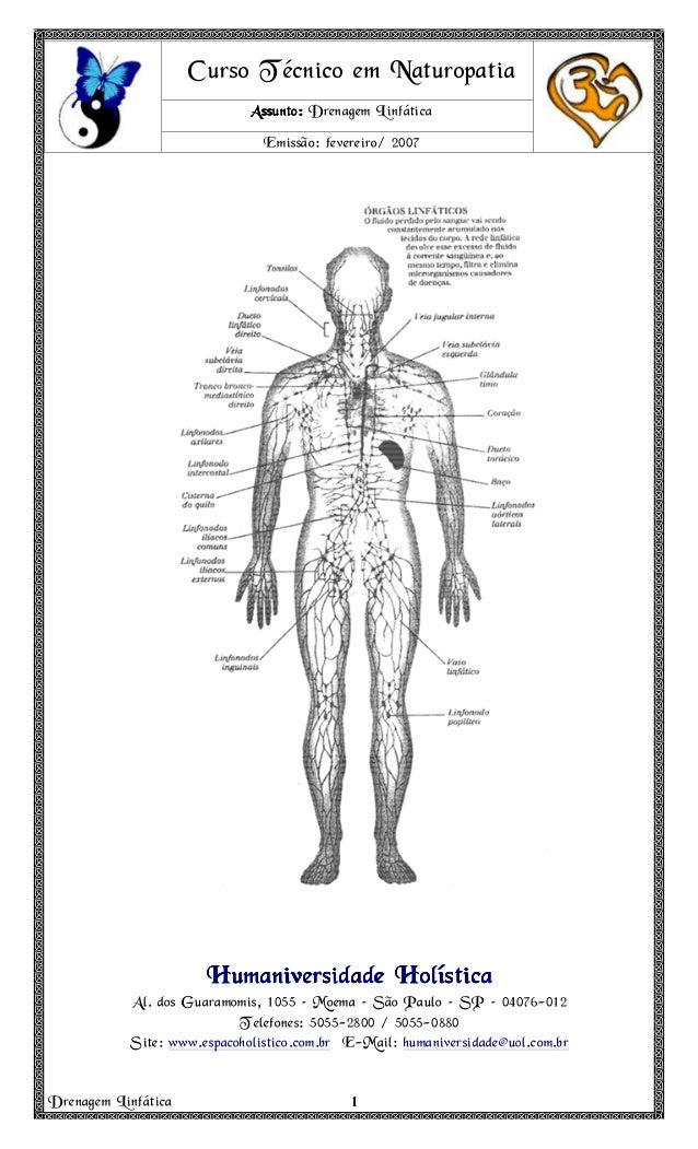 Drenagem Linfática 1111 Curso Técnico em Naturopatia Assunto:Assunto:Assunto:Assunto: Drenagem Linfática Emissão: fevereir...