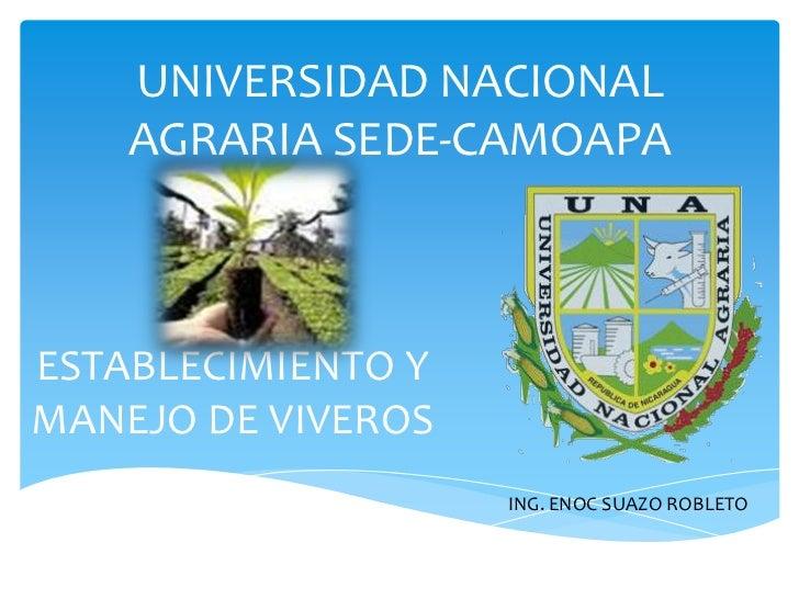 UNIVERSIDAD NACIONAL AGRARIA SEDE-CAMOAPA<br />ESTABLECIMIENTO Y MANEJO DE VIVEROS<br />ING. ENOC SUAZO ROBLETO<br />