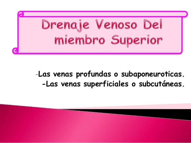 -Las venas profundas o subaponeuroticas.  -Las venas superficiales o subcutáneas.