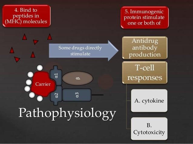 4. Bind to                                  5. Immunogenic  peptides in                                  protein stimulate...