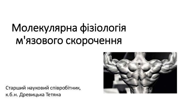 Молекулярна фізіологія м'язового скорочення Старший науковий співробітник, к.б.н. Древицька Тетяна