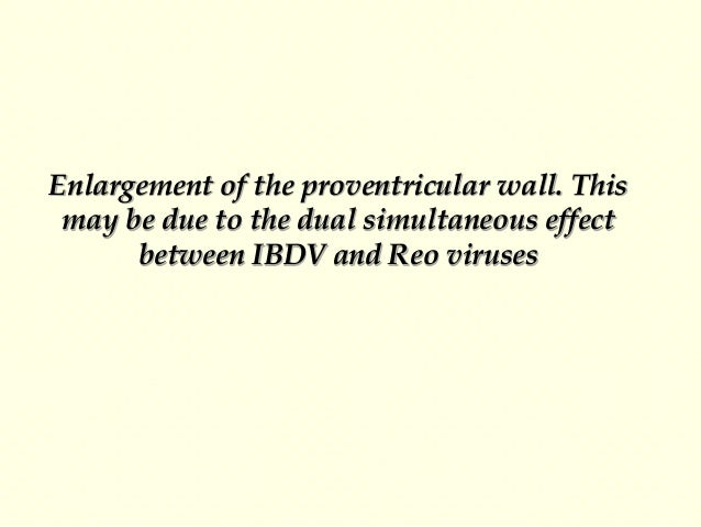 Control of IBD The specific treatment is not available up till now but from our practical experience we can try the follow...
