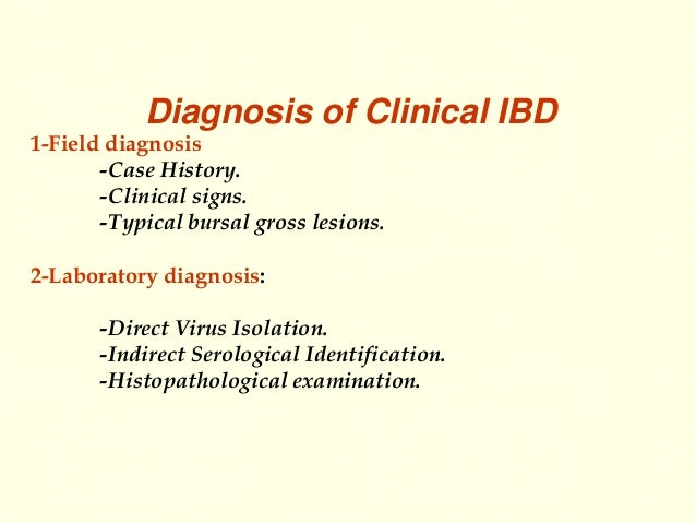 Dr Fares El-khayat  -Infectious bursal disease