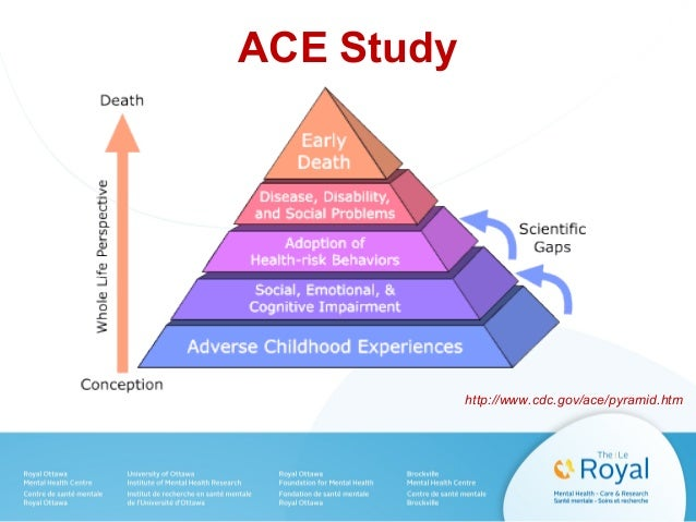 Adverse Childhood Experience (ACE) Questionnaire