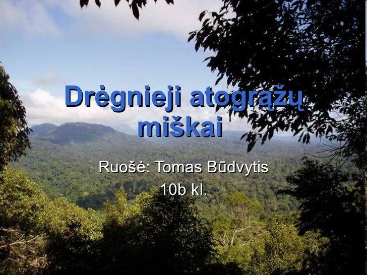 Drėgnieji atogrąžų miškai   Ruo šė: Tomas Būdvytis 10 b kl.