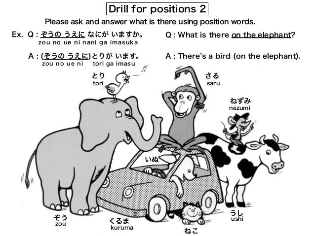 drill forpositions1
