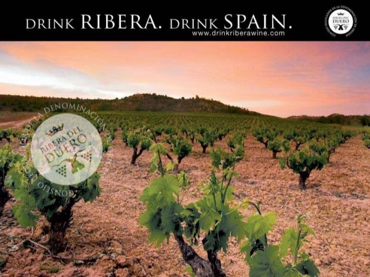    Essence of Spain – Ribera's terroir, culture, history, long tradition of wine    making results in the ultimate expres...