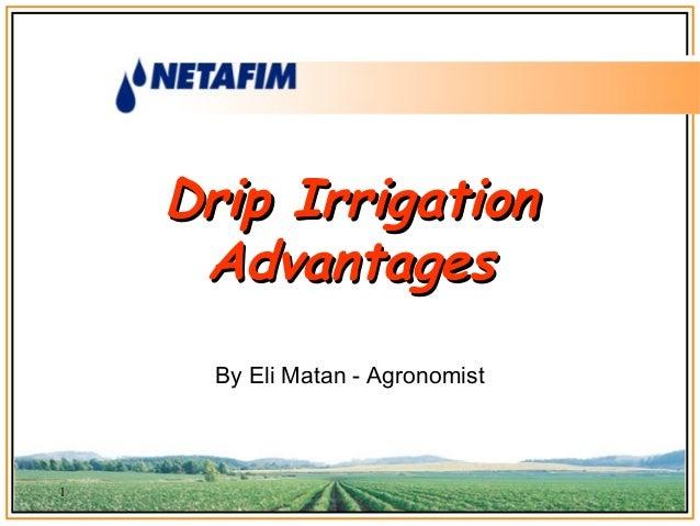 Drip IrrigationDrip IrrigationAdvantagesAdvantagesBy Eli Matan - Agronomist1