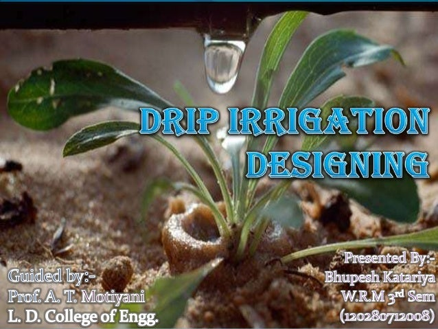 drip irrigation in israel pdf