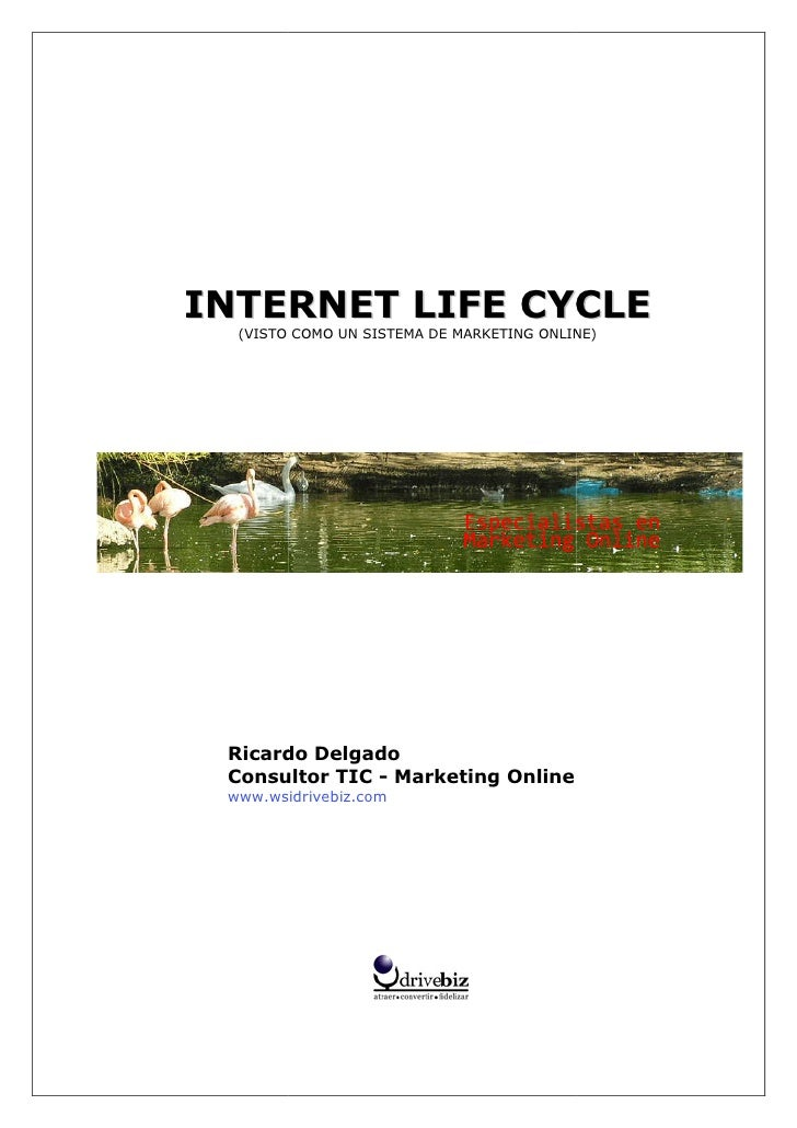 INTERNET LIFE CYCLE    ER   (VISTO COMO UN SISTEMA DE MARKETING ONLINE)    VISTO      Ricardo Delgado  Consultor TIC - Mar...