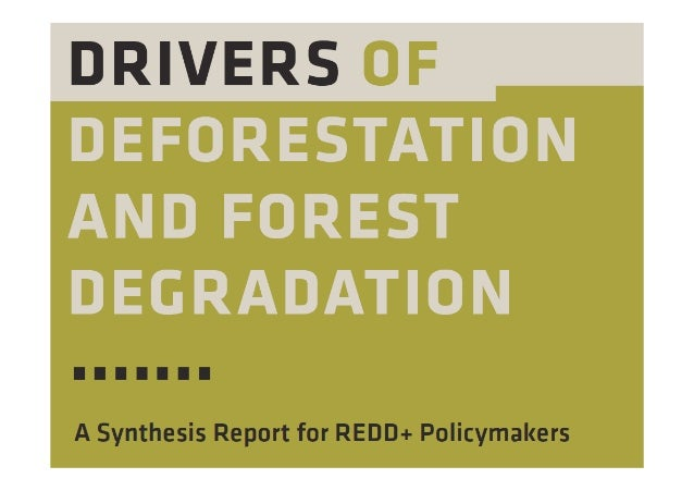DriversofDeforestationandForestDegradation:ASynthesis                                                   Reportfor...