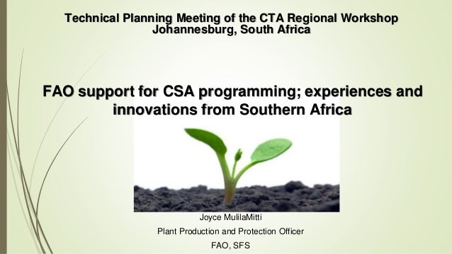 Joyce MulilaMitti Plant Production and Protection Officer FAO, SFS Technical Planning Meeting of the CTA Regional Workshop...