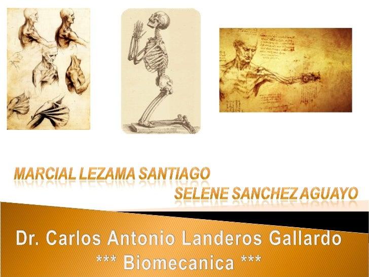Biomecanica del Cuerpo Humano