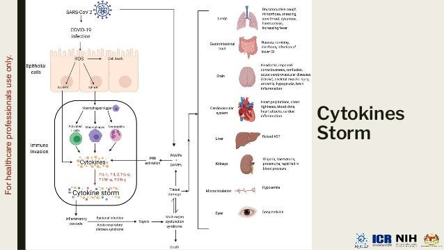 Cytokines Storm For healthcare professionals use only.