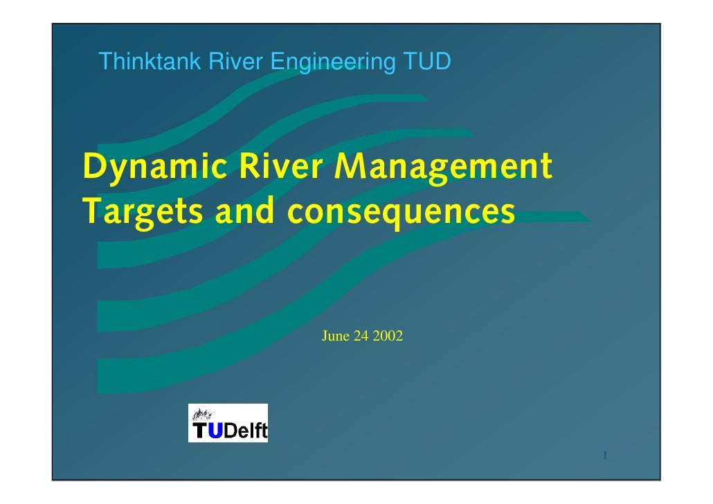 Thinktank River Engineering TUDDynamic River ManagementTargets and consequences                   June 24 2002            ...
