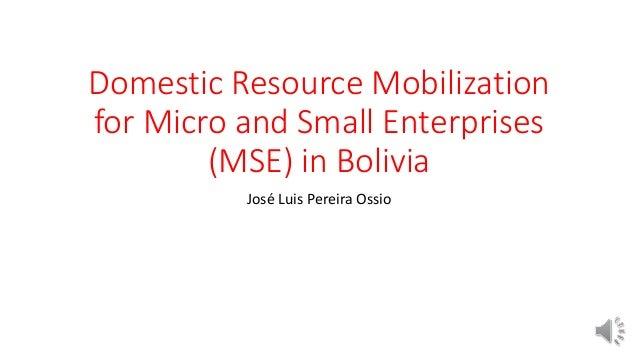 Domestic Resource Mobilization for Micro and Small Enterprises (MSE) in Bolivia José Luis Pereira Ossio