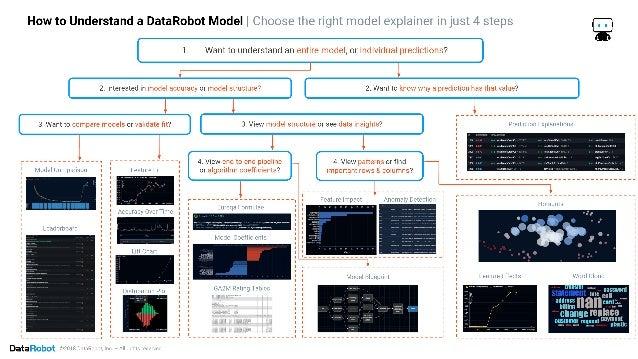 How to Understand a DataRobot Model