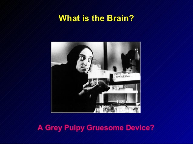 What is the Brain?  A Grey Pulpy Gruesome Device?