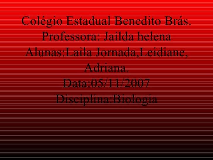Colégio Estadual Benedito Brás. Professora: Jaílda helena Alunas:Laila Jornada,Leidiane, Adriana. Data:05/11/2007 Discipli...