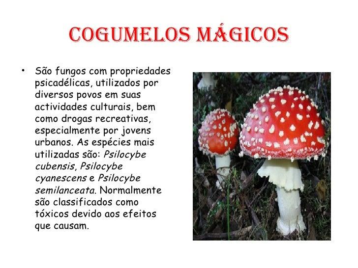 [Imagem: drogas-17-728.jpg?cb=1232370897]