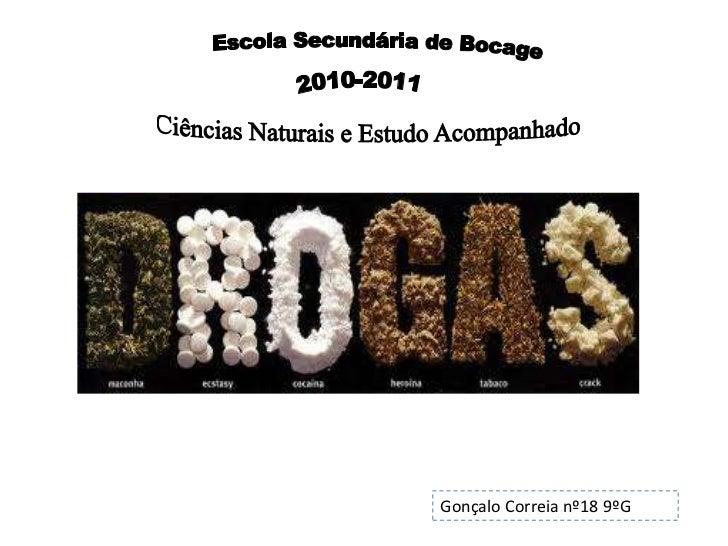 Escola Secundária de Bocage<br />2010-2011<br />Ciências Naturais e Estudo Acompanhado<br />Gonçalo Correia n...