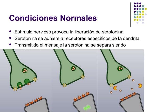 Acción del ÉxtasisAlteración de dos tipos:  1.   Bloqueo del retorno de absorción.  2.   Modificación de las proteínas de ...