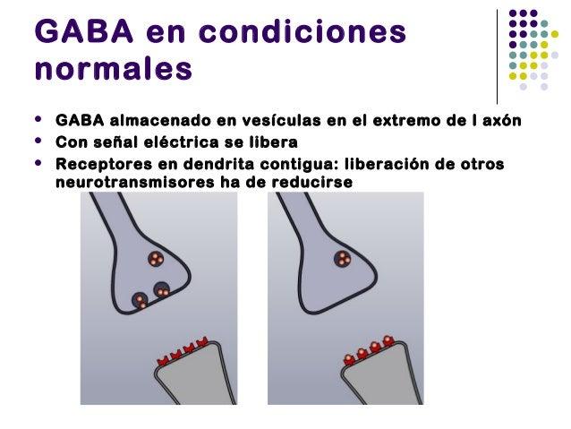 GABA bajo los efectos delalcohol   El alcohol se adhiere también al receptor de GABA, pero por otro punto.   GABA perman...