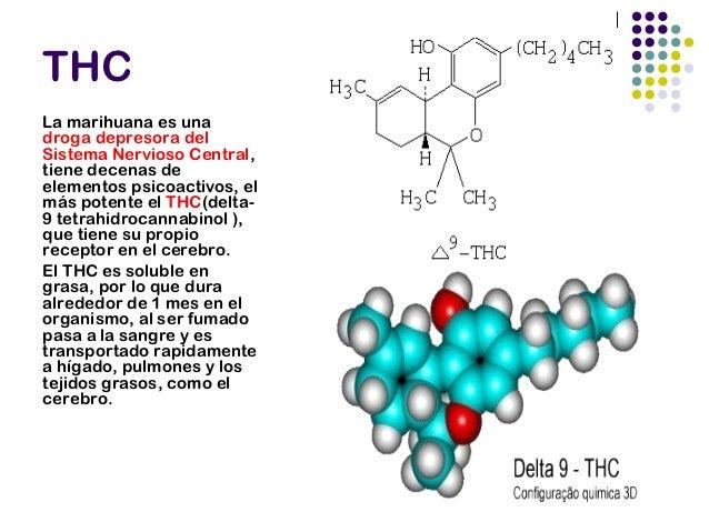 ALGUNOS NEUROTRANSMISORESAFECTADOS GABA Dopamina Anandamida 2-araquidonoilglicerol