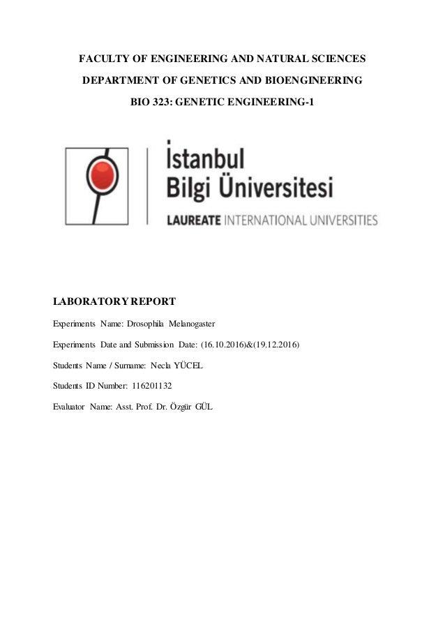 Sexual dimorphism lab report